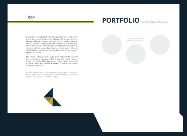 normal folder 1